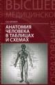 Анатомия человека в таблицах и схемах. Учебник
